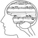 možgani in glasba
